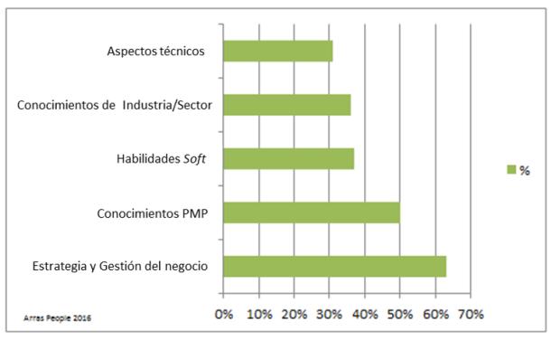 Areas de desarrollo Project Manager