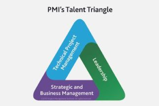 Triangulo de talento Gestor de Proyectos
